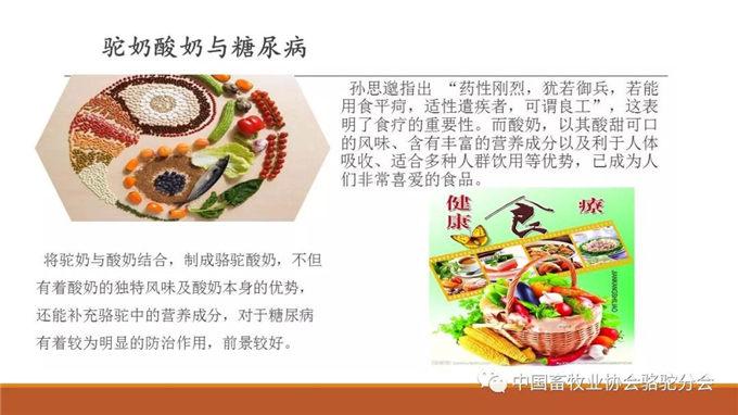 上古医学,骆驼奶研究 南京中医药大学教授 李海涛