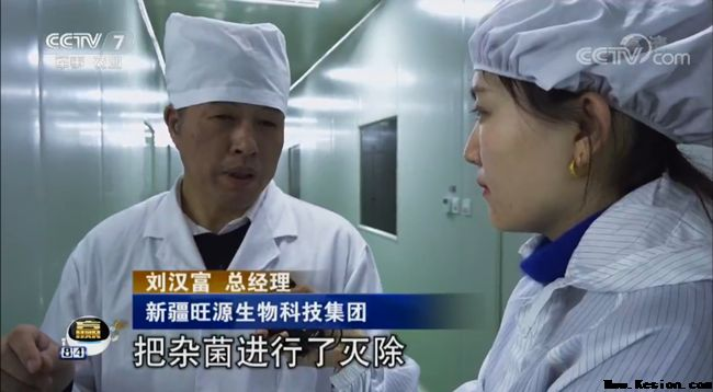 央视聚焦三农:新疆骆驼-旺源骆驼奶专卖网