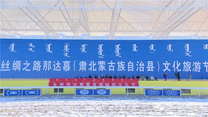 新春佳节话骆驼—甘肃-旺源骆驼奶专卖网
