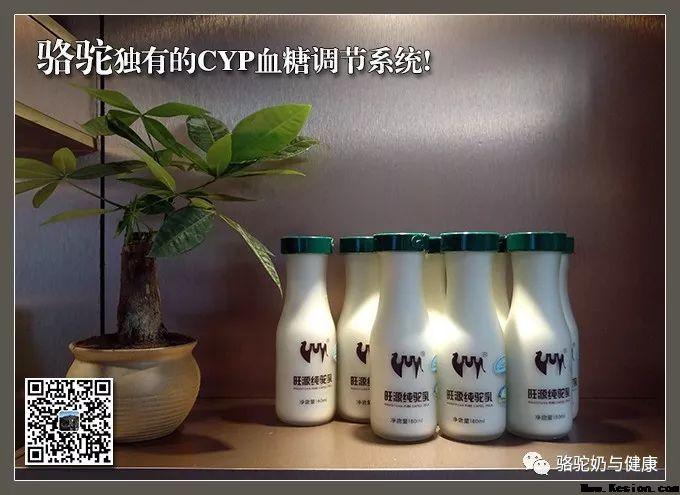 内蒙古骆驼研究院:骆驼-旺源骆驼奶专卖网