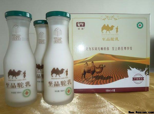 骆驼奶粉-旺源骆驼奶专卖网
